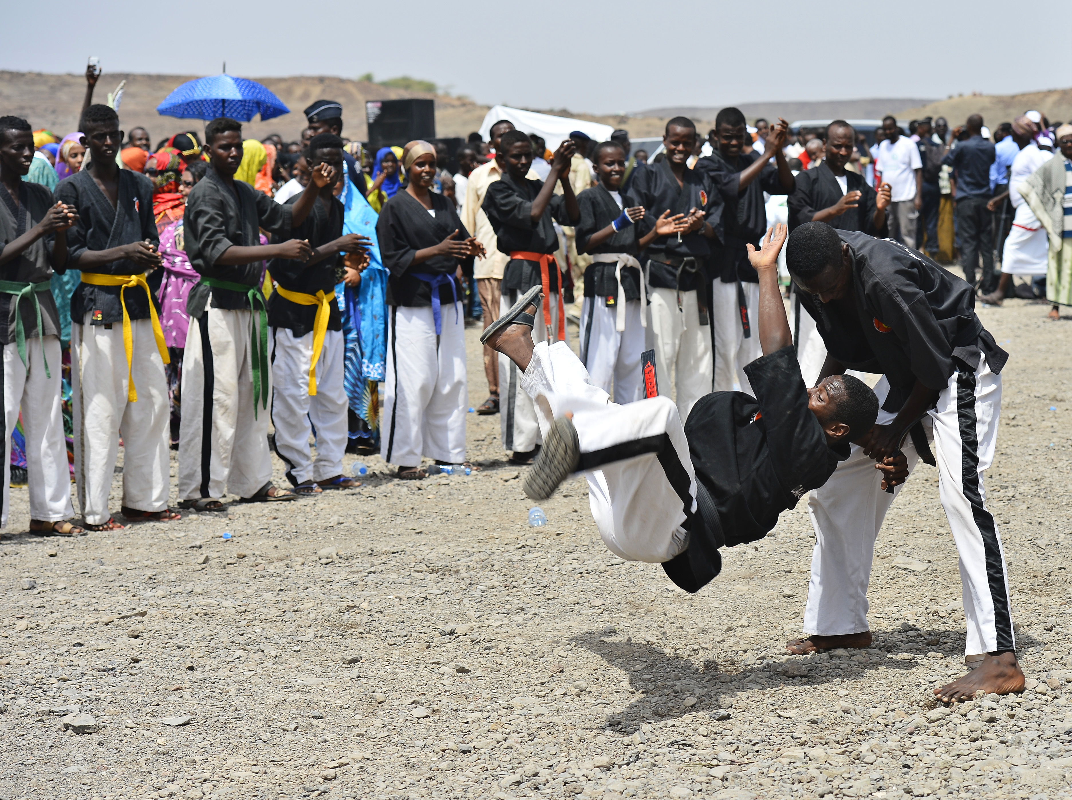 Members of the Dakaïto Ryu martial arts group perform for Habib Mohamed Loita, the 21st Sultan of Gobaad, during his induction ceremony in Dikhil, Djibouti, May 22, 2015. (U.S. Air Force photo by Senior Airman Nesha Humes)