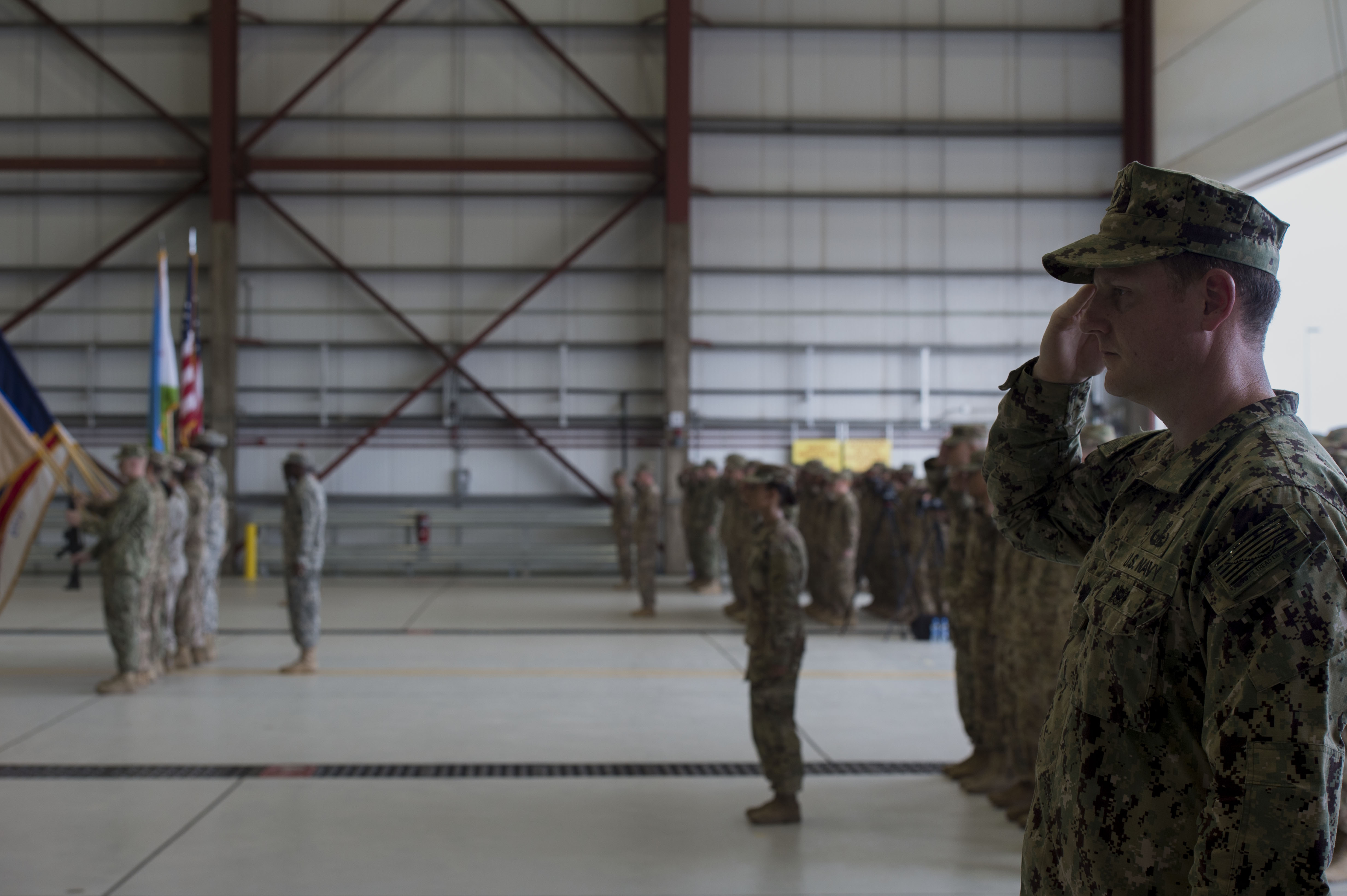 Members of Combined Joint Task Force-Horn of Africa salute while the U.S. and Djiboutian national anthems play during the CJTF-HOA change of command ceremony April 13, 2016, at Camp Lemonnier, Djibouti. U.S. Army Brig. Gen. Kurt Sonntag assumed command of CJTF-HOA from previous commander Maj. Gen. Mark Stammer. (U.S. Air Force photo by Staff Sgt. Eric Summers Jr.)