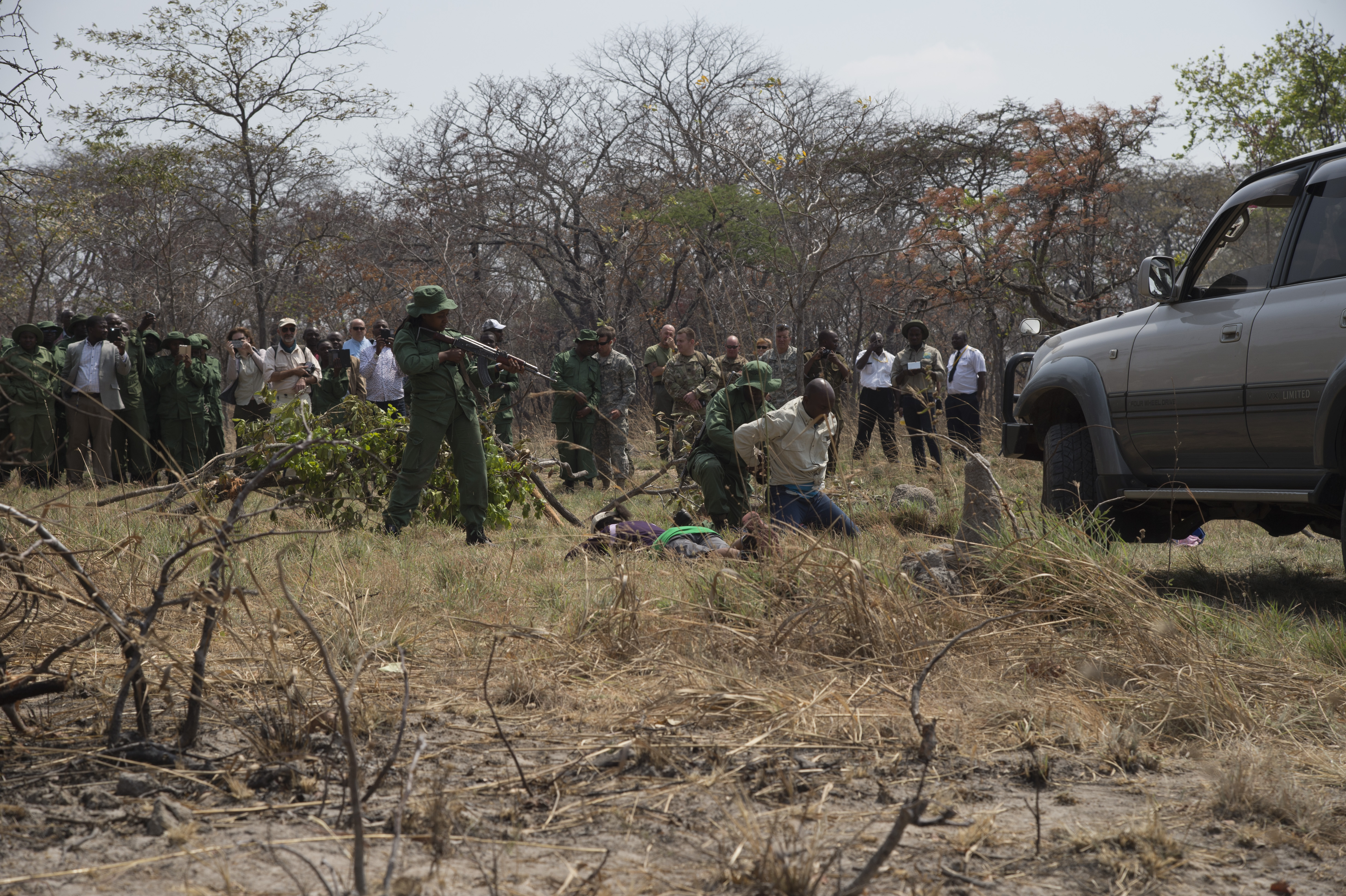Tanzania park and game reserve rangers apprehend and search simulated poachers who tried to escape in a vehicle during a demonstration August 24, 2016, at the Rungwa Game Reserve, Tanzania. Rangers recently trained with members of the 403rd Civil Affairs Battalion, a component of Combined Joint Task Force - Horn of Africa, and North Carolina Army National Guard to learn techniques to track and capture poachers. (U.S. Air Force photos by Staff Sgt. Eric Summers Jr.)