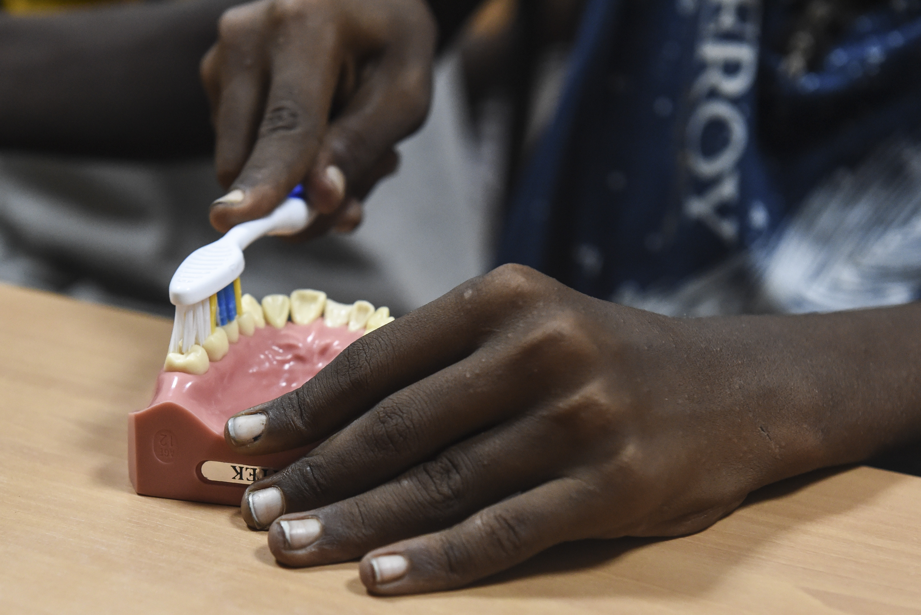 A child uses a dental typodont to practice teeth-brushing techniques during an oral hygiene demonstration in Djibouti City, Djibouti, Aug. 8, 2017. In support of Combined Joint Task Force-Horn of Africa's efforts to promote regional security, stability and prosperity, the 443rd Civil Affairs Battalion functional specialty team conducted multiple oral hygiene instruction classes for approximately 60 children from the local area. (U.S. Air Force photo by Staff Sgt. Eboni Prince)