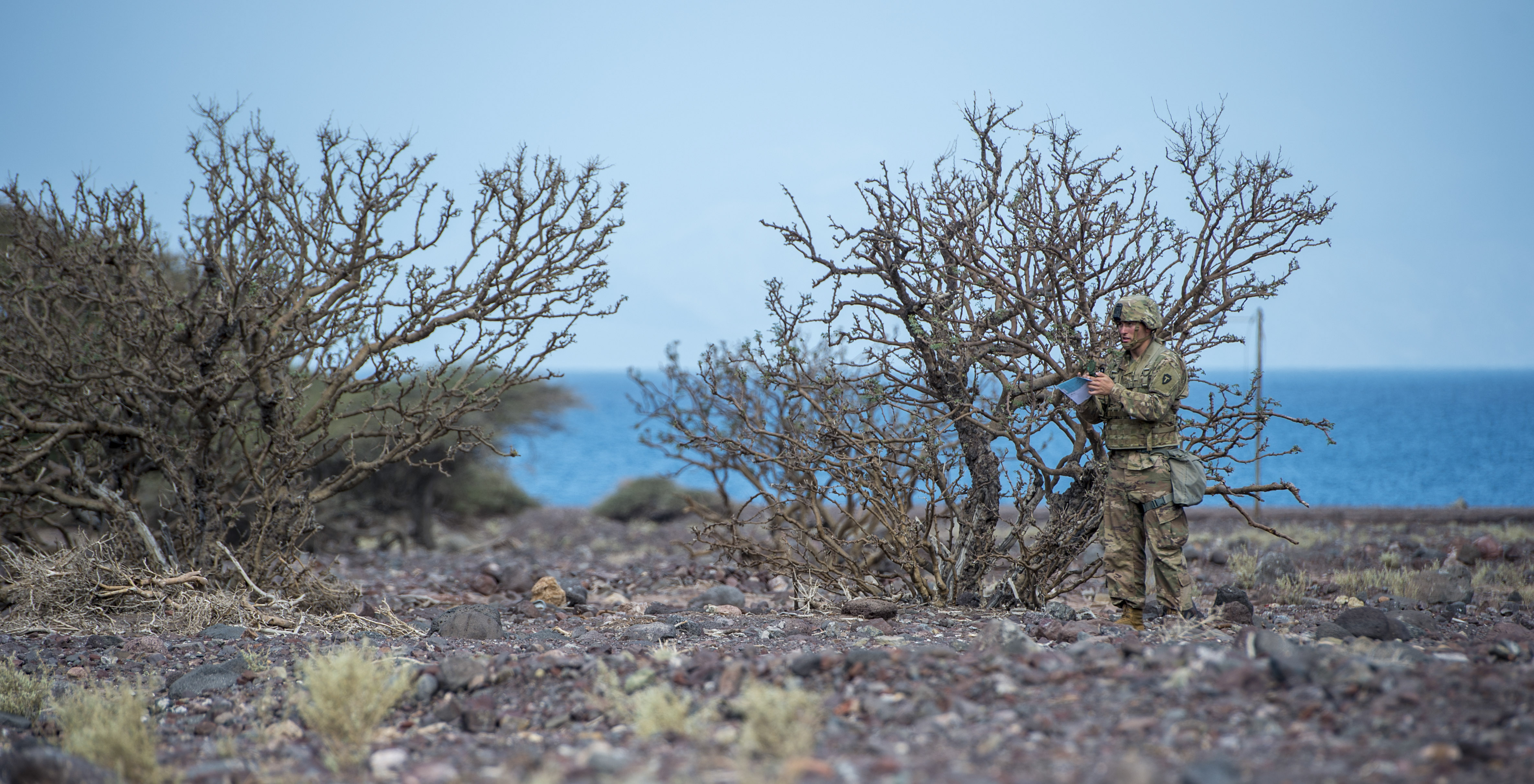 A U.S. Army Soldier assigned to Combined Joint Task Force - Horn of Africa uses a compass to locate a grid point during land navigation training in preparation for an Expert Infantryman Badge evaluation at Arta Range, Djibouti, Jan. 25, 2018. After two weeks of training and five days of testing, 50 Soldiers completed the process to earn the coveted special skills badge that requires Soldiers to perform an Army Physical Fitness Test, day and night land navigation, a 12-mile forced march, and 30 individual tasks covering weapons, medical, and security patrol skills. (U.S. Air Force photo by Staff Sgt. Timothy Moore)
