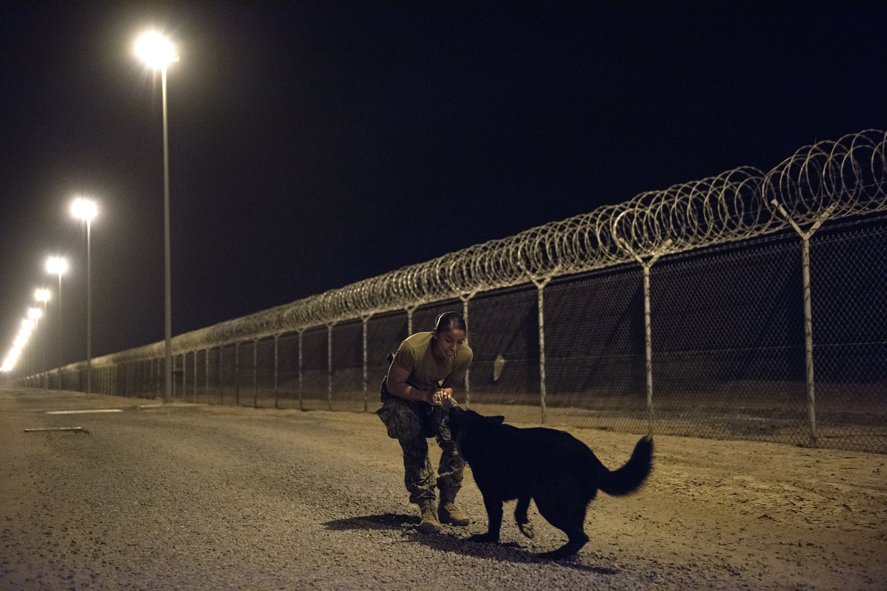 U.S. Navy Master-at-Arms 2nd Class Adrianna Lajas, a military working dog (MWD) handler rewards MWD Oliver after conducting proficiency training on Camp Lemonnier, Djibouti, July 31, 2018. Military Working Dogs can be used to perform searches, subdue suspects, and detect explosives and narcotics. (U.S. Air National Guard photo by Master Sgt. Sarah Mattison)