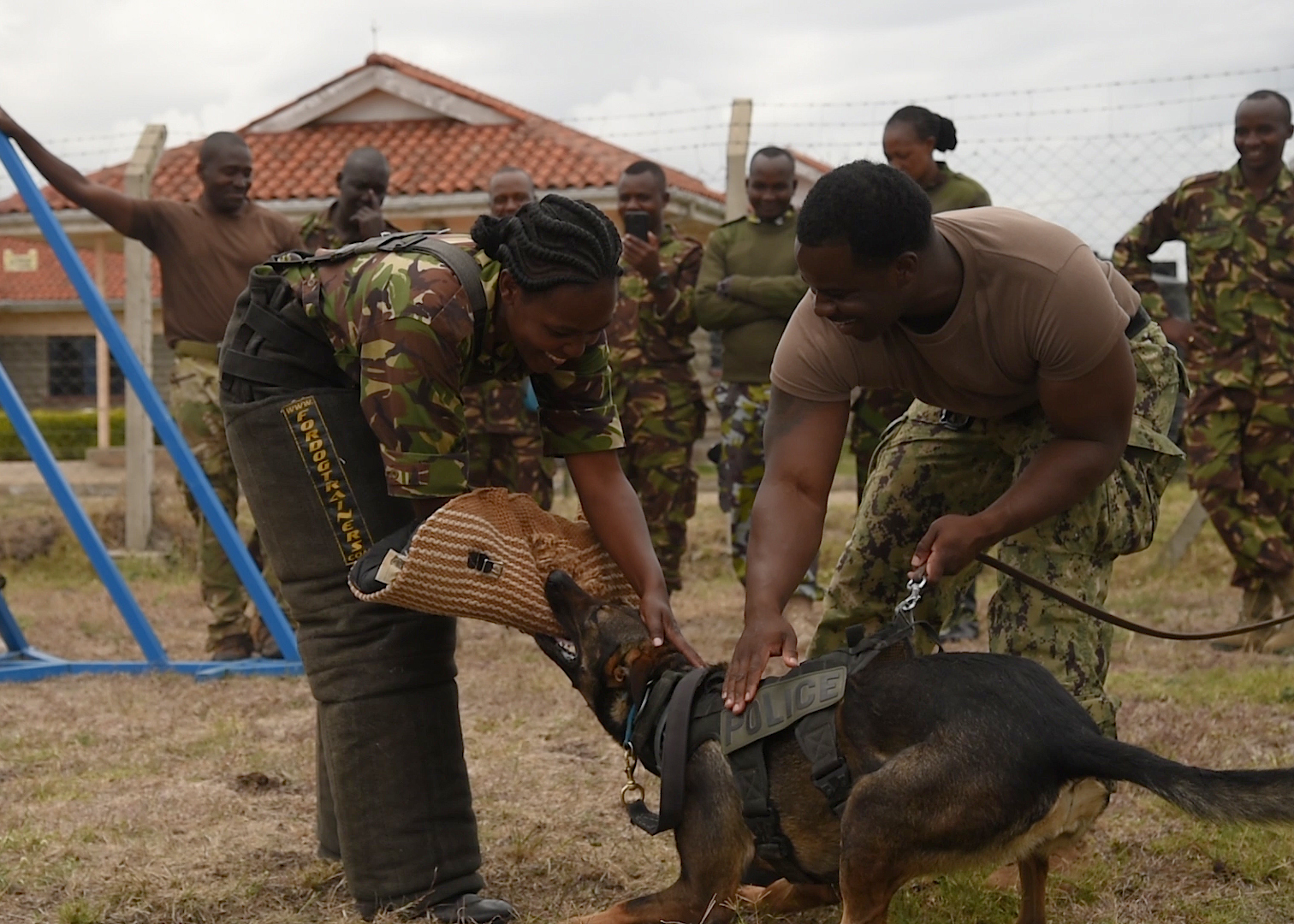 U.S. Navy Master at Arms 2nd Class Dontay Harris, a military working dog (MWD) handler deployed to Camp Lemonnier, Djibouti, assists a member of the Kenya Defence Force's (KDF) 1st Canine Regiment during a bite training demonstration with his MWD Gina. U.S. and Kenyan MWD handlers were able to share insights into their profession during the week-long exchange between the Civil Affairs Battalion's Functional Specialty Team assigned to Combined Joint Task Force-Horn of Africa and the Kenya Defence Force. (U.S. Air Force photo by Senior Airman Kirsten Brandes)