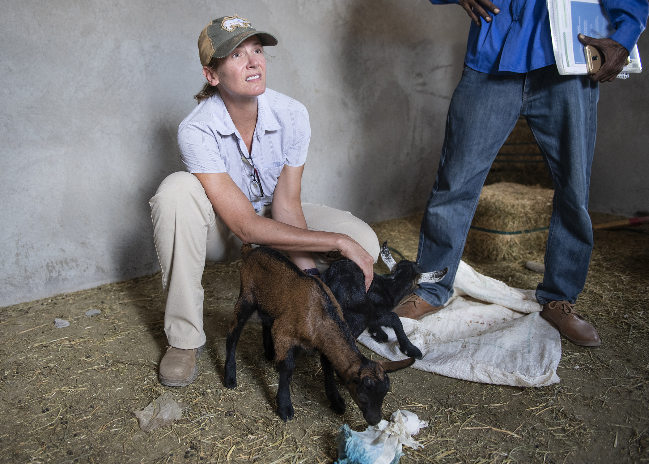 U.S. Army Lt. Col. Leah Tingley, a veterinarian assigned to the 403rd Civil Affairs Battalion, Functional Specialty Cell Veterinary Team, assigned to Combined Joint Task Force-Horn of Africa, checks a goat's health while meeting with local pastoralists to promote better herd-health management and to facilitate communication for further engagements during a veterinary civic action project (VETCAP) in Oulma, Djibouti, Feb. 14, 2019. The purpose of civil affairs VETCAPs is to build relationships with local community animal health workers and the Djiboutian Ministry of Livestock via animal health surveillance and to improve knowledge, skills, livestock medicine and best practices. (U.S. Air Force photo by Tech. Sgt. Shawn Nickel)