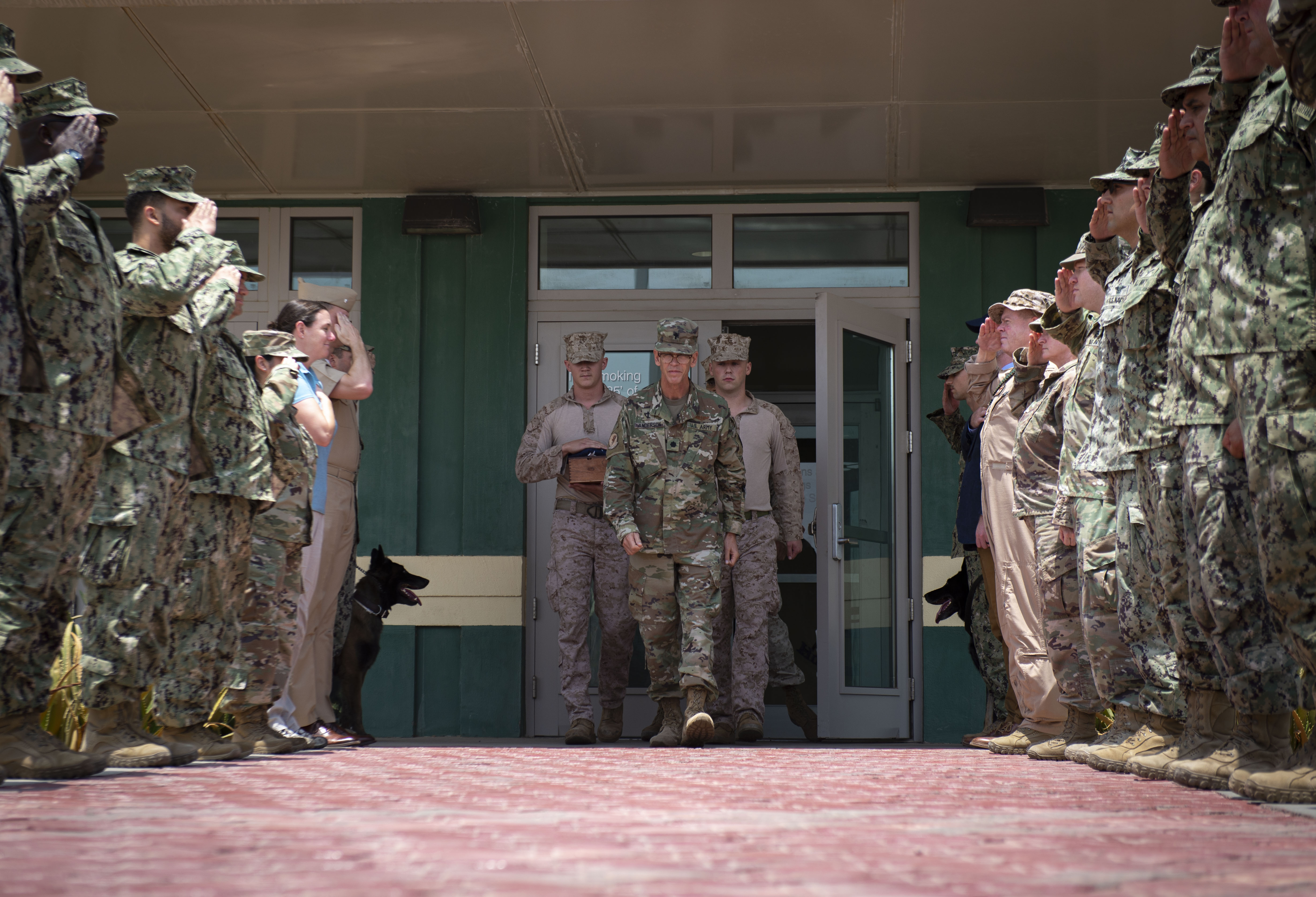 Service members assigned to Combined Joint Task Force-Horn of Africa (CJTF-HOA) and Camp Lemonnier, Djibouti (CLDJ), salute during the dignified transfer of U.S. Marine military working dog, Aarno, at CLDJ, Sept. 19, 2019. Aarno passed away of natural causes while assigned to CLDJ-HOA. (U.S. Air Force photo by Senior Airman Gabrielle Spalding)